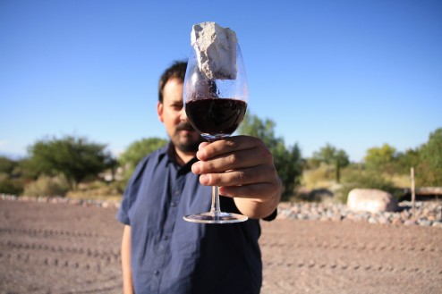 Pedro Parra Terroir Wine, Altos Las Hormigas